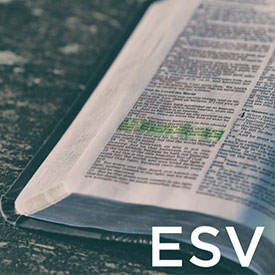 Link To ESV Page