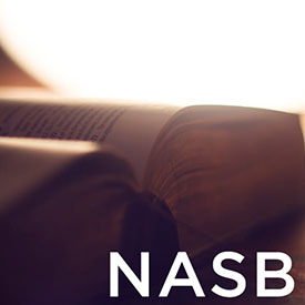 Link To NASB Page