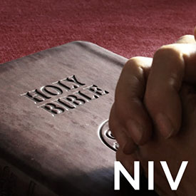 Link To NIV Page